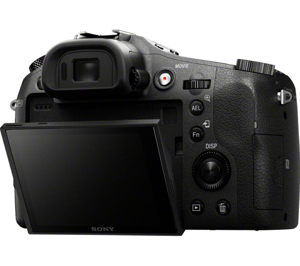 buy sony dsc-rx10 high performance compact camera