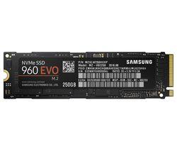 SAMSUNG 960 Evo Internal SSD - 250 GB