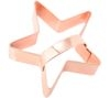 EDDINGTONS Star Cookie Cutter - Copper