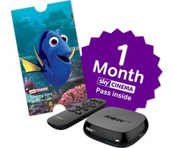 NOW TV Box with 2 month Sky Movies Pass & Sky Store Voucher