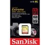 SANDISK Extreme Class 10 SDHC Memory Card - 32 GB